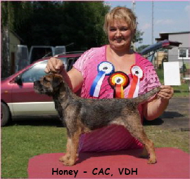 Honey V1 CAC,VDH Mittenwalde - Kopie